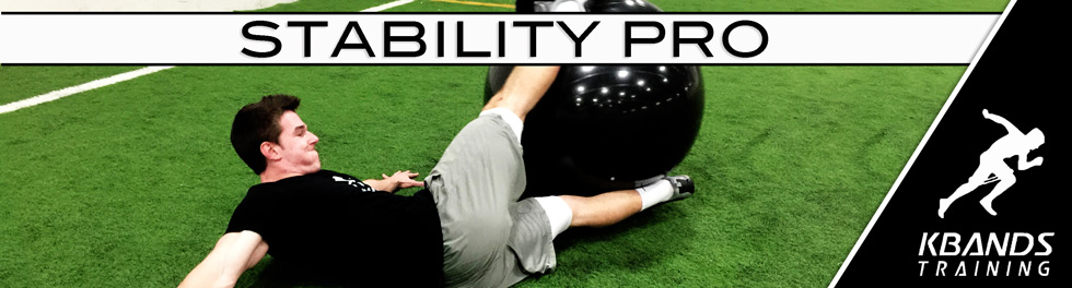 Stability Pro Digital Trainer